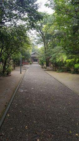 江田神社参道_s.jpg