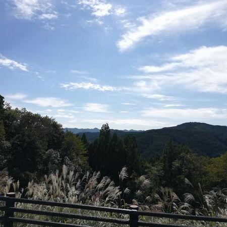 熊野古道5_s.jpg