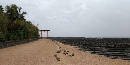 青島神社1_s.jpg